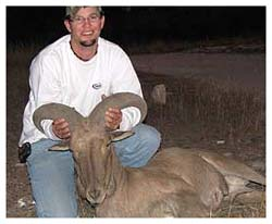 the aoudad sheep can live